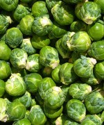Fresh Brussel Sprouts